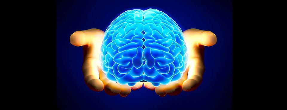 Una proteina del cordone ombelicale per curare l'invecchiamento cerebrale