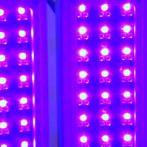 Ringiovanire con la luce LED