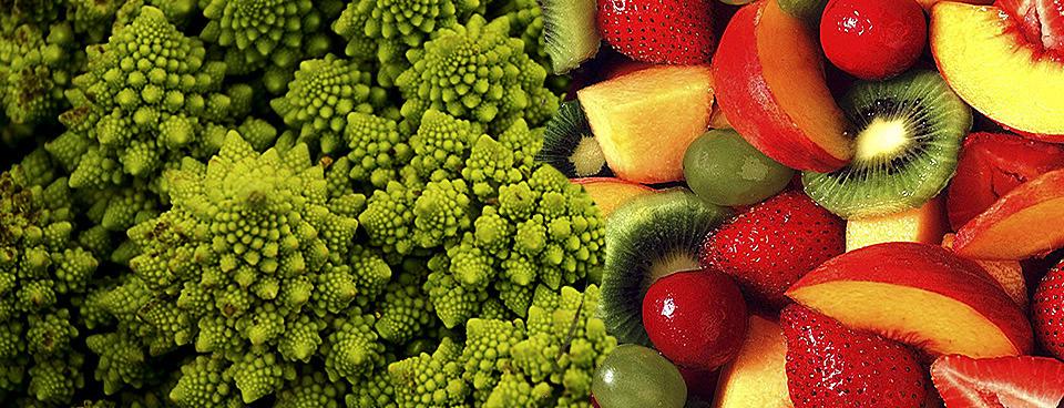 Il tipo di alimentazione determina la grandezza del nostro cervello