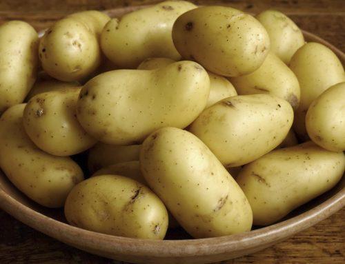 Assunzione di patate e rischio di diabete