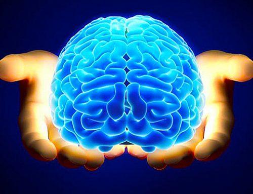 El cerebro y el cobre