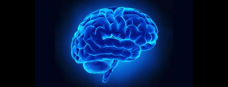 Invecchiamento cerebrale e vitamina B12