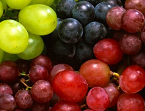 Polyphenols and inflammation – Insight